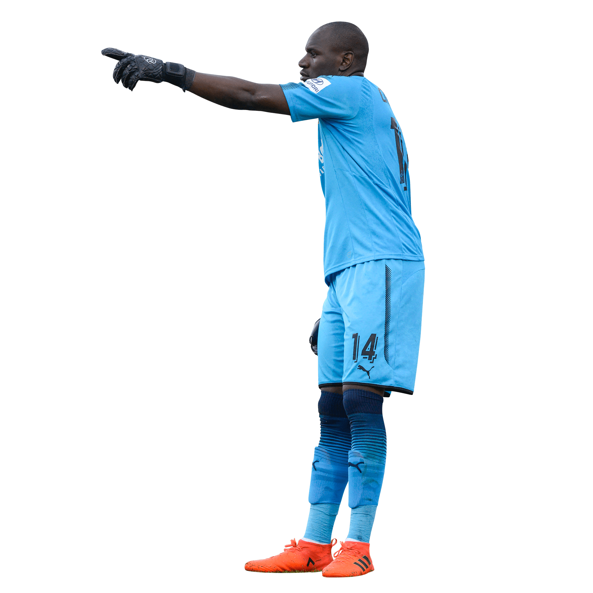 denis – Mamelodi Sundowns Website